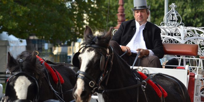 Carriage Driver