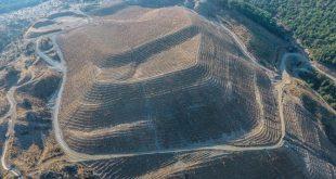 izmirin-dikili-ilcesinde-600-dekarlik-maden-sahasinda-orman-ve
