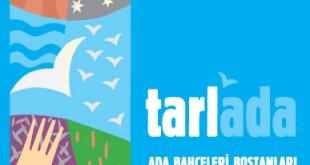 tarlada300