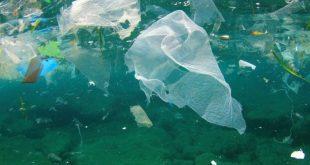 plastik-deniz-750x500